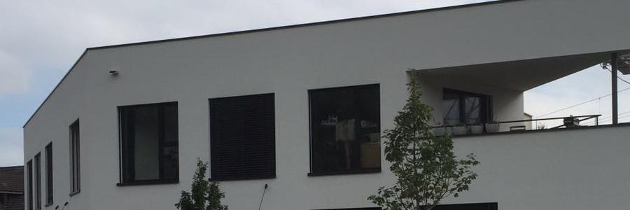 Neubau Atelier und Wohnungen, Horw