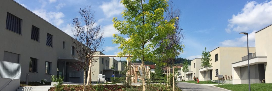 Wohnüberbauung Grünau, Neuenkirch
